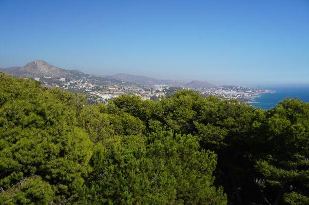 Borovicové háje obklopujúce hrad Gibralfaro a hory obklopujúce celú Málagu