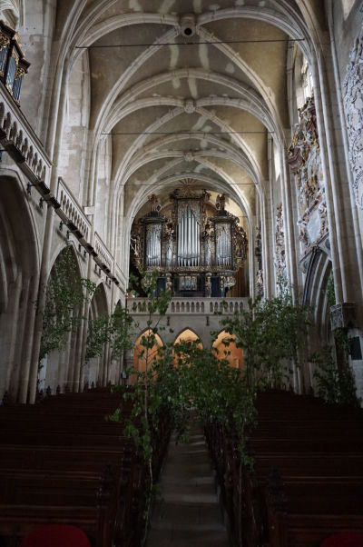 Hlavná loď Evanjelickej katedrály sv. Márie v Sibiu - typická gotická architektúra je reflektovaná i vysokým štíhlym profilom a krížovou klenbou