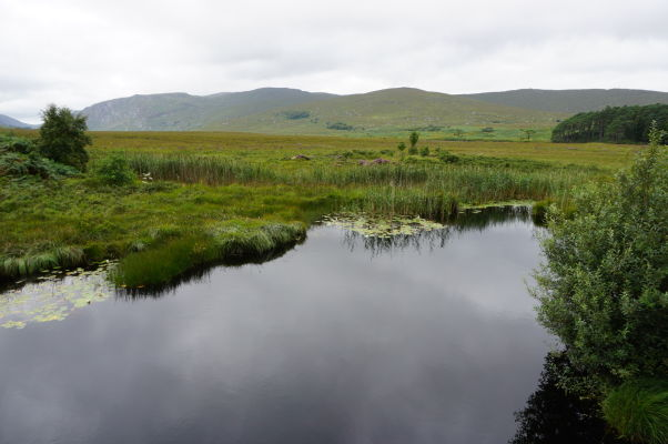 Národný park Glenveagh v Írsku - vstup do parku lemujú močiare a mokrade