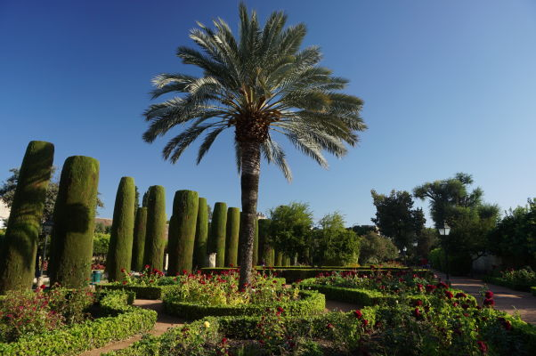 Záhrady v kráľovskom paláci Alcázar v Córdobe