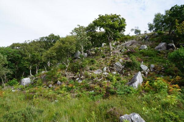 """Národný park Glenveagh v Írsku - vegetácia je tak bujná, ako by to človek na ostrove prezývanom """"smaragdový"""" očakával"""