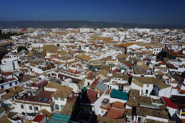 Výhľad na bielu Córdobu z veže Mezquity (bývalého minaretu)
