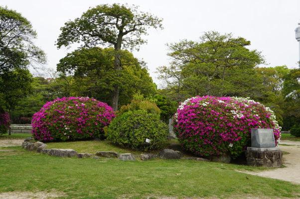 Okolie hradu v Hirošime je plné zelene