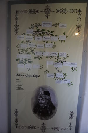 Rodokmeň Vlada III., zvaného Drakulu