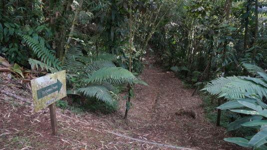 Prejazd horami stredom Grenady - Začiatok jedného z trekov
