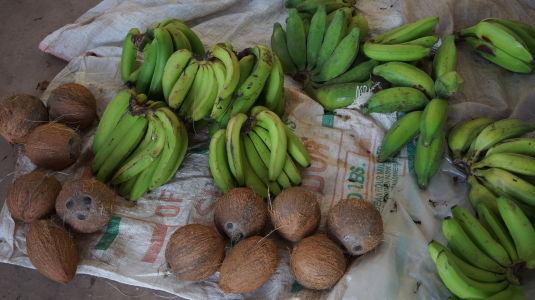 Banánmi a kokosovými orechmi Grenada priam prekypuje