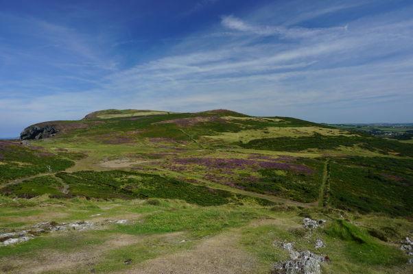 Útes Bradda Head pokrytý fialovými kvetmi neďaleko mestečka Port Erin pri pohľade z Milnerovej veže