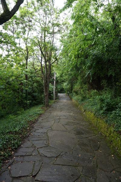 Zelené okolie reliéfu Madarského jazdca