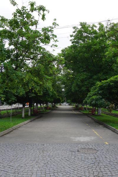 Ulica Eugana Doga v Kišiňove prechádza do zeleného Bulváru Grigora Vieru