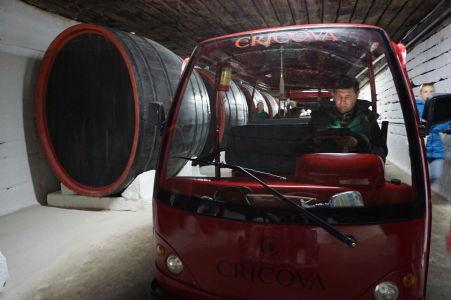 Vláčiky sú optimálnym prostriedkom pre prepravu osôb v pivnici