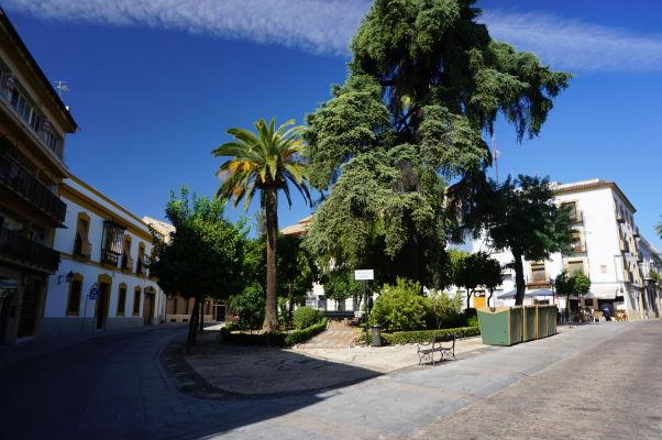Námestíčko Plaza Cardenal Toledo v Córdobe