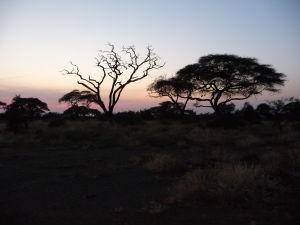 Západ Slnka nad africkou krajinou