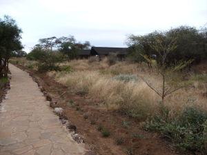 Kemping v Amboseli