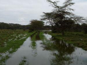 V období dažďov bývajú cesty zatopené