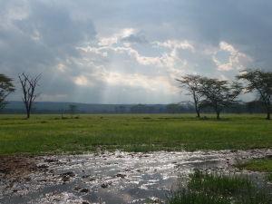 Gýčová panoráma jazera Nakuru