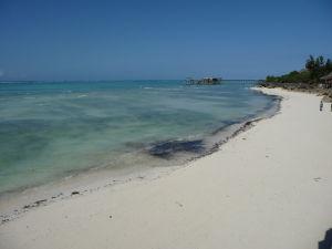 Ale inak sú zanzibarské pláže ako z pohľadnice