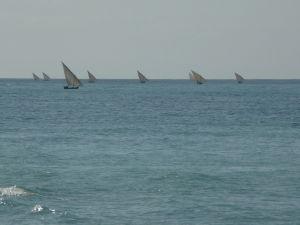 Fanúšikovia vodných športov majú na Zanzibare raj