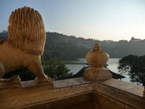 Tento levík má dobrý výhľad na jazierko