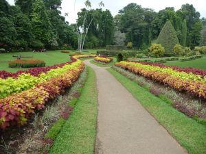Kráľovská botanická záhrada