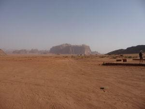 Osamelá ťava v púšti