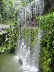 Umelý vodopád vo vtáčom parku