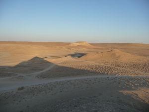 Cestičky v púšti