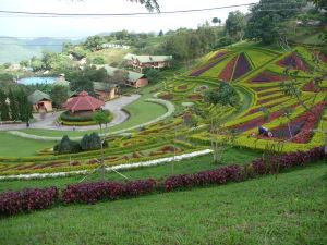 Záhrada v Mae Salong