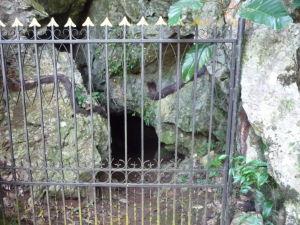 Džungľa - Vstup do jaskyne