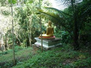 Džungľa - Zlatý Budha stráži vstup do jaskyne
