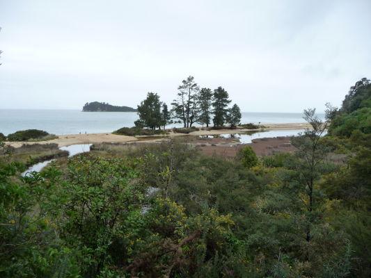 Abel Tasman NP - Cesta občas vedie veľmi nízko nad morom, tesne nad korunami stromov