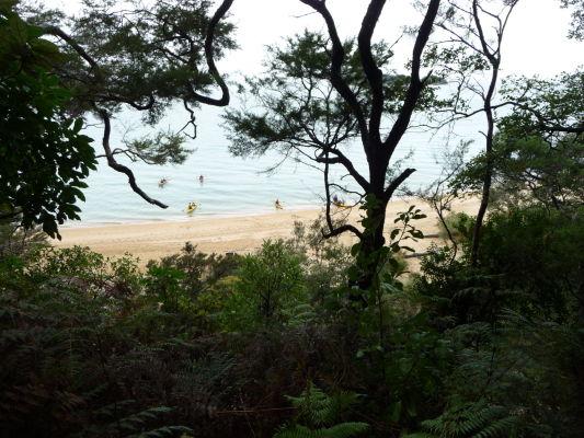 Abel Tasman NP - Jedna z pláží v národnom parku