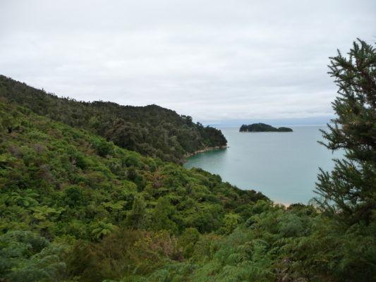 Abel Tasman NP - Na ceste po pobreží sa miestami otvárajú krásne výhľady na more - napríklad na ostrov Fisherman Island