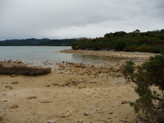 Abel Tasman NP - Miestami vedie cestička na úrovni mora