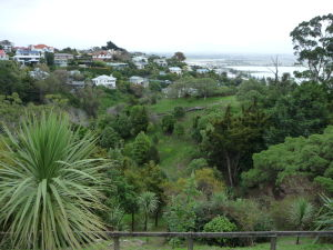Napier - Bluff Hill