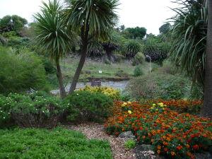 Napier - Centennial Park