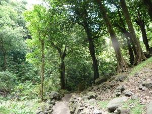 Faarumai - Tri vodopády - Cesta k ďalším dvom