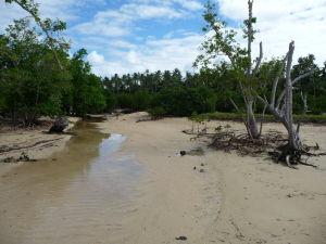 Na ostrove Pangaimotu