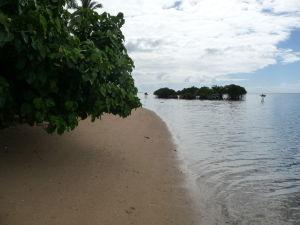 Mangrovníky na ostrove Pangaimotu