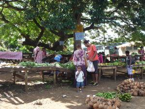 Menšia tržnica v Port Vile