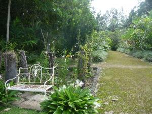 Na farme si je možné i obzrieť rastliny a oddýchnuť