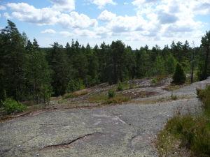Cestičky vedú občas po kamenistých kopcoch