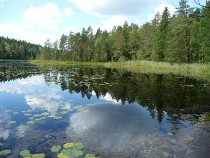 Hladiny jazier sú veľmi pokojné a preto krásne zrkadlia okolie