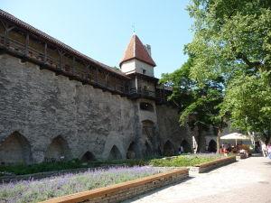 Tallinnské hradby