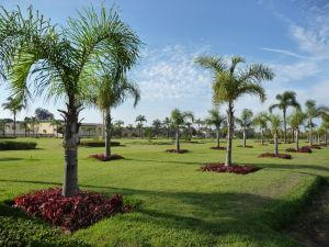Park v okolí kráľovského paláca