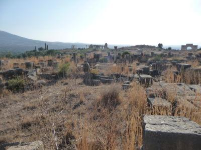 Ruiny rímskeho mesta Volubilis