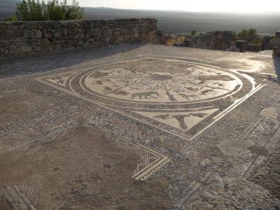 Mozaika so zvieracími motívmi vo Volubilise