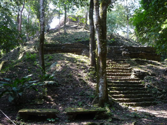 Jeden z odkrytých chrámov v Palenque - je tu vidieť, ako rýchlo vie miestna džungľa pohltiť kamenné mesto