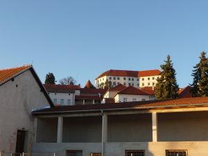 Ptujský hrad