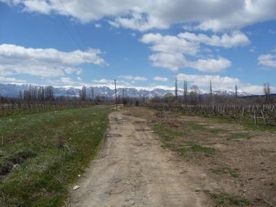 Balkáske hory a vinice v Macedónsku