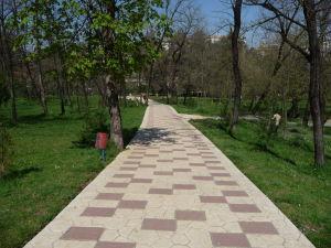 Mestský park v Tirane